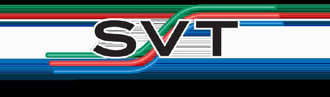 19-065 Logos—SVT@2x.png